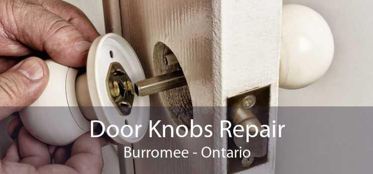 Door Knobs Repair Burromee - Ontario
