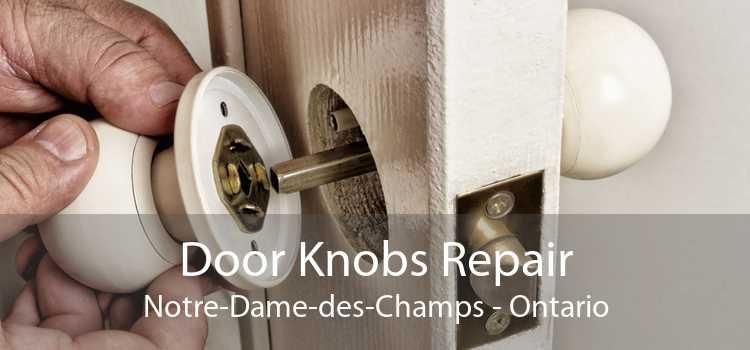 Door Knobs Repair Notre-Dame-des-Champs - Ontario