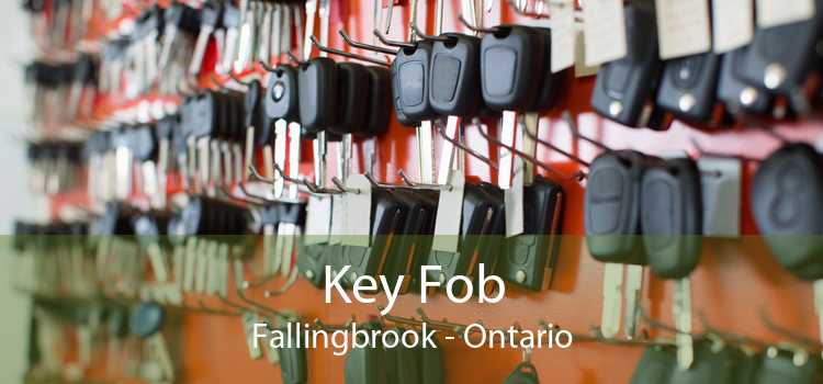 Key Fob Fallingbrook - Ontario