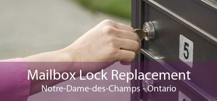 Mailbox Lock Replacement Notre-Dame-des-Champs - Ontario