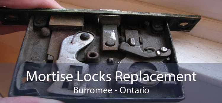 Mortise Locks Replacement Burromee - Ontario