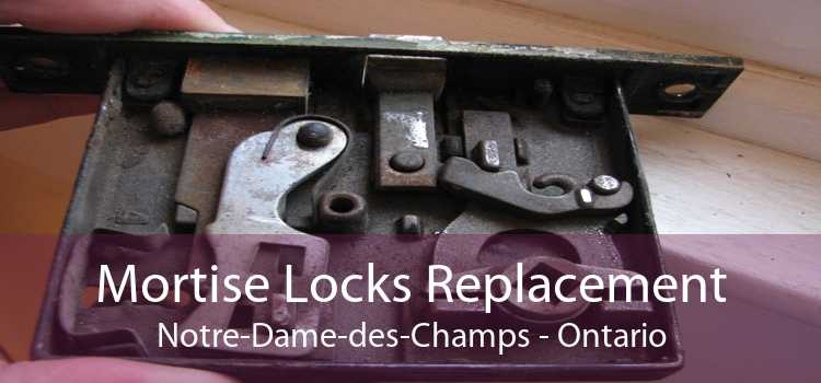 Mortise Locks Replacement Notre-Dame-des-Champs - Ontario