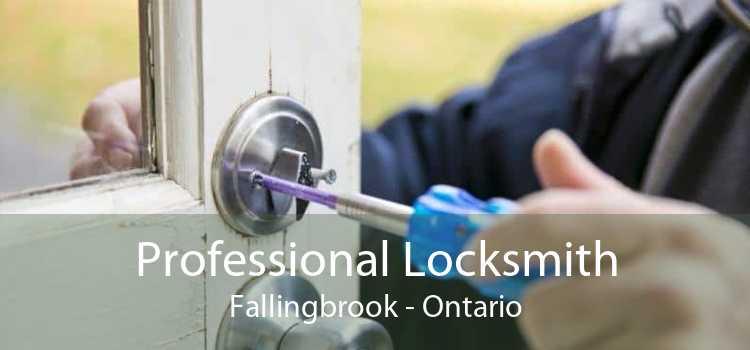 Professional Locksmith Fallingbrook - Ontario