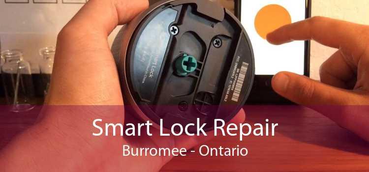 Smart Lock Repair Burromee - Ontario